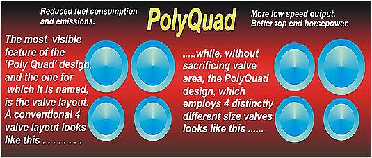 Figure 4 PolyQuad